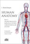 Human anatomy. Part 2. Splanchnology. Nervous system. Cardiovascular system: Study guide for the practical classes course